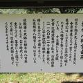 Photos: 旗挙八幡宮 ・木曽義仲館跡(木曽町)