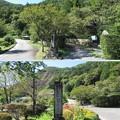 Photos: 徳音寺(木曽町)