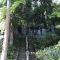 徳音寺(木曽町)木曽義仲ら墓所