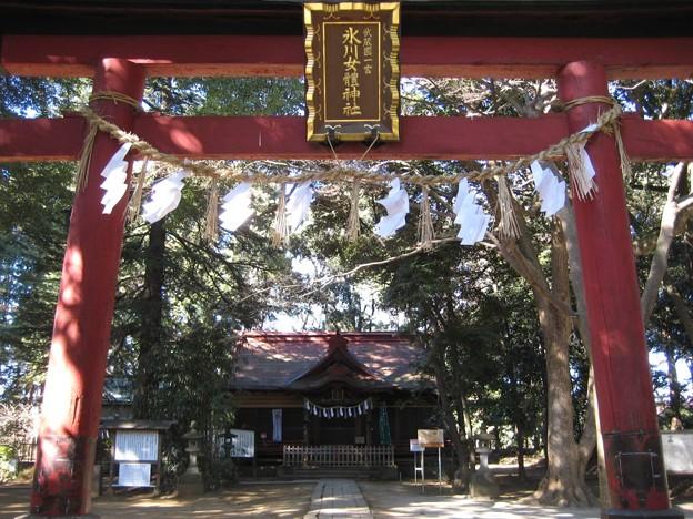 Photos: 11.01.31.氷川女体神社(さいたま市見沼区)