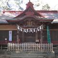 11.01.31.氷川女体神社(さいたま市見沼区)拝殿