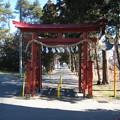 Photos: 11.01.31.中山神社(さいたま市見沼区)一の鳥居