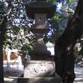 11.01.31.中山神社(さいたま市見沼区)
