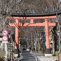 Photos: 11.01.31.氷川神社(大宮区)一の鳥居