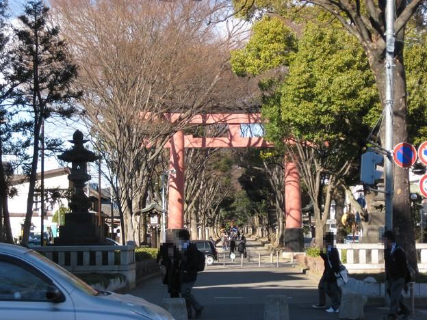 11.01.31.氷川神社(大宮区)二の鳥居