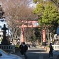 Photos: 11.01.31.氷川神社(大宮区)二の鳥居