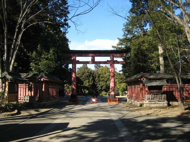 Photos: 11.01.31.氷川神社(大宮区)三の鳥居