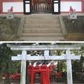 Photos: 11.01.31.氷川神社(大宮区)稲荷神社