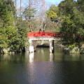 Photos: 11.01.31.氷川神社(大宮区)神橋
