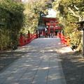11.01.31.氷川神社(大宮区)神橋