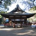 11.01.31.氷川神社(大宮区)舞殿