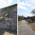 Photos: 白河小峰城(福島県白河市)二ノ丸水堀跡