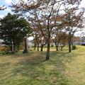 白河小峰城 本丸城塁(福島県白河市)