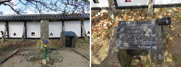 白河小峰城 本丸三重櫓(福島県白河市)おとめ桜