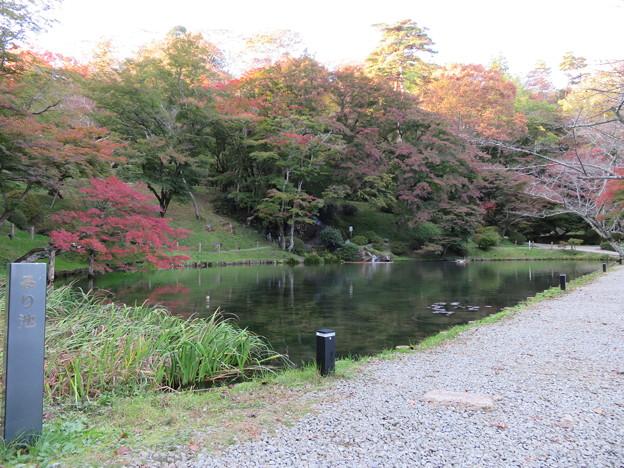 二本松城(福島県二本松市)るり池