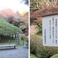 二本松城(福島県二本松市)傘松