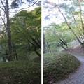 Photos: 二本松城(福島県二本松市)本宮舘