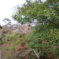 二本松城(福島県二本松市)搦手門跡 上より