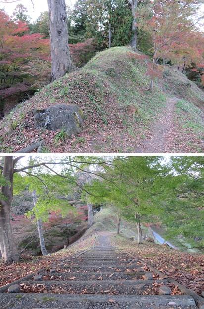 二本松城(福島県二本松市)土塁・空堀