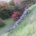 Photos: 二本松城(福島県二本松市)本丸 大石垣