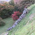 二本松城(福島県二本松市)本丸 大石垣