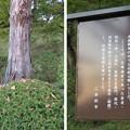 二本松城(福島県二本松市)丹羽一学・服部久左衛門・丹羽新十郎自尽の地碑