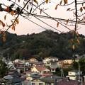Photos: 大壇口古戦場(二本松市)
