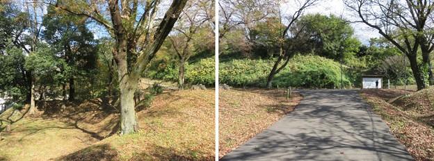Photos: 大田原城(大田原市)坂下門跡
