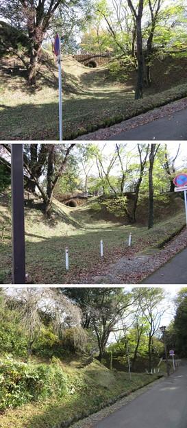 Photos: 大田原城(大田原市)堀切