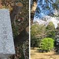 Photos: 大田原城 二の丸(大田原市)硝煙蔵