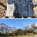Photos: 大田原城 本丸(大田原市)武庫跡