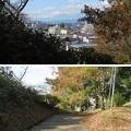 Photos: 大田原城 本丸(大田原市)裏門跡