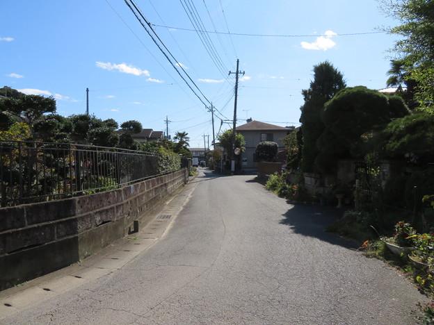 Photos: 大田原城(大田原市)水堀跡