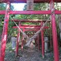 Photos: 黒羽城 郭(大田原市)土塁/両社稲荷神社