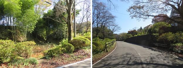 Photos: 黒羽城 郭(大田原市)水堀跡
