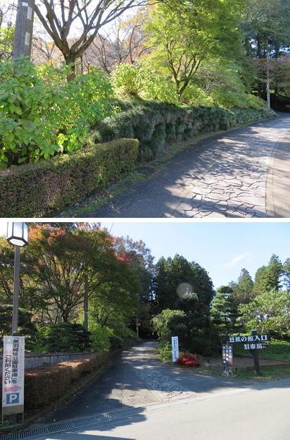 Photos: 黒羽城 三郭(大田原市)土塁