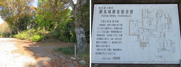 黒羽城 本郭(大田原市)大関氏居館