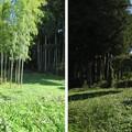 Photos: 黒羽城 郭(大田原市)