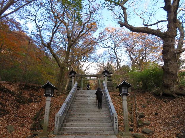 那須温泉神社(那須町)三の鳥居