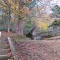 Photos: 那須温泉神社(那須町)松尾芭蕉句碑
