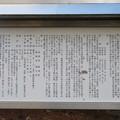 Photos: 那須温泉神社(那須町)