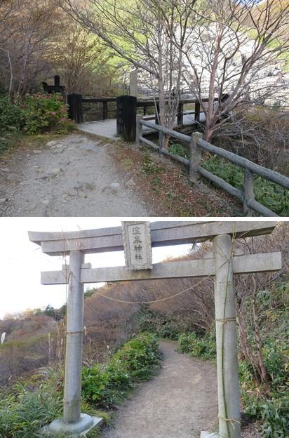 Photos: 那須温泉神社(那須町)北鳥居