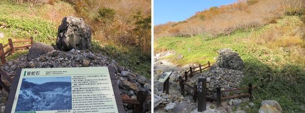 殺生石園地(那須町)盲蛇石