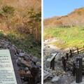 Photos: 殺生石園地(那須町)盲蛇石