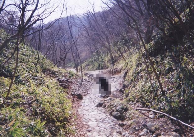 Photos: 01.11.23.殺生石園地(那須町)展望台登山道
