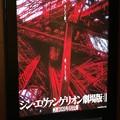 Photos: 来年?┐(-ε-)┌