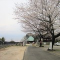 Photos: 13.03.23.西福寺(川口市)