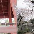 Photos: 西福寺(川口市)鐘楼・梵鐘