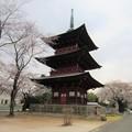 Photos: 西福寺(川口市)三重塔