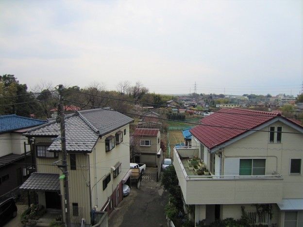 西福寺(川口市)より南西、赤山陣屋外堀・(前方)出丸跡